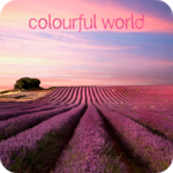 Colourful World (2:31)