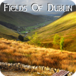 Fields Of Dublin (3:42)
