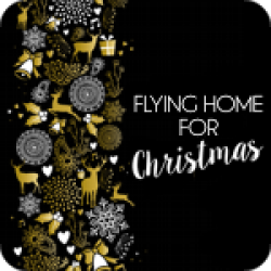 Flying Home For Christmas