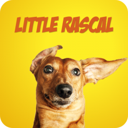 Little Rascal - 3 Versionen (2:13)