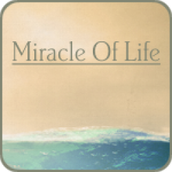 Miracle Of Life (1:55)
