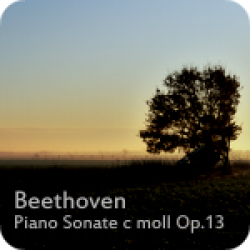 Beethoven Piano Sonate c moll Op.13