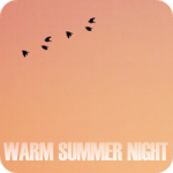 Warm Summer Night
