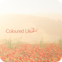 Coloured Life (3:12)