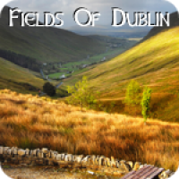 Fields Of Dublin